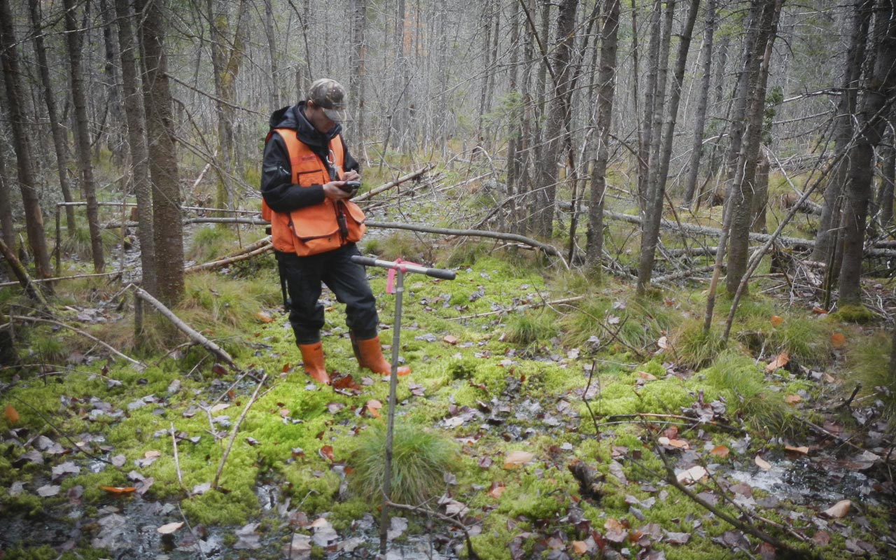 Forestry tools for sustainability