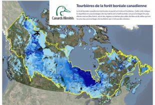 Sonder les profondeurs des tourbières du Canada, au nombre des plus vastes réservoirs de carbone dans le monde