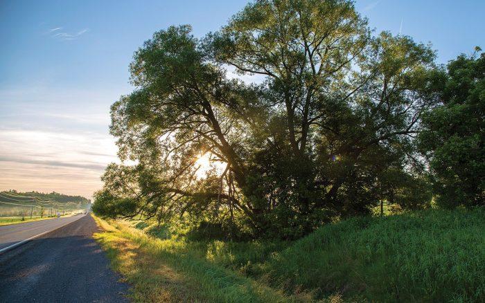 Le territoire naturel des collines de Carp constitue une toile de fond pour la campagne ondoyante et les nouveaux complexes d'habitation.