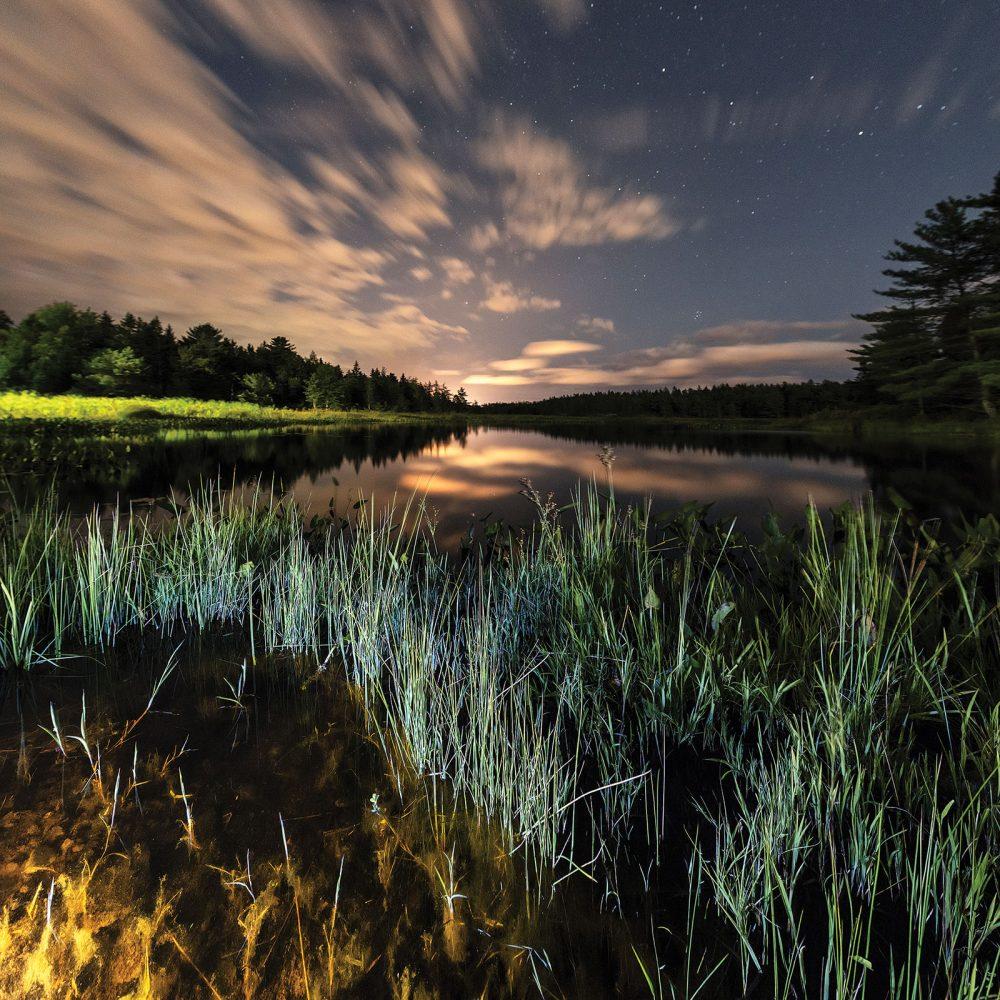 Milieu humide du Parc national Kejimkujik, en Nouvelle Écosse. Dans ce parc continental, le milieu humide assure l'habitat des espèces en péril comme la tortue mouchetée. Parce qu'il est désigné par Parcs Canada comme réserve de ciel étoilé, les observateurs d'étoiles peuvent y trouver un rare moment de répit, loin de l'éblouissement de l'éclairage artificiel, pour profiter des reflets de la lune et des étoiles dans les eaux des milieux humides.