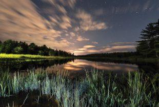 Photoreportage sur la nature : Tout sur la diversité, la majesté et la puissance des milieux humides