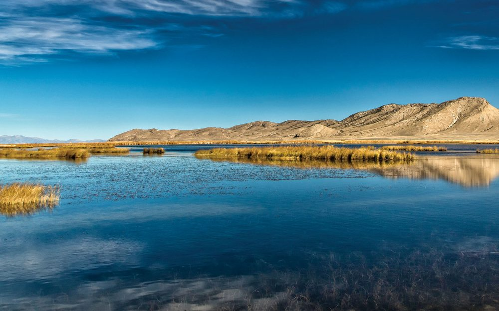 Dans Nevada, l'état le plus sec des États-Unis, l'eau est la plus précieuse ressource de toutes. Des milieux humides comme celui-ci apportent, aux humains comme à la sauvagine, un répit qui intervient toujours au bon moment.