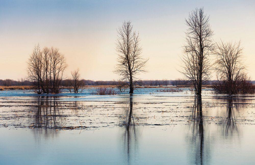 lac Saint-Pierre