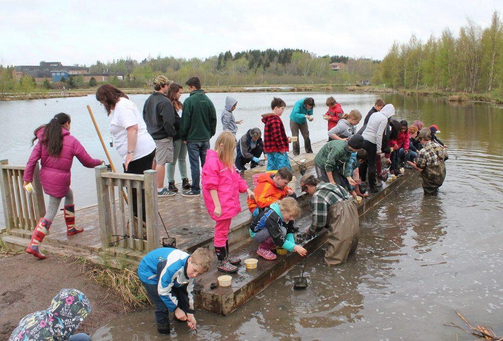 Cette année, CIC a financé 25 Centres d'excellence des milieux humides.