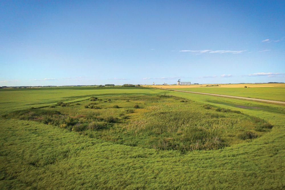 La transformation révélée au grand jour : grâce au financement de la Fondation Coca-Cola, on peut restaurer ce milieu humide des Prairies, non loin de Strathclair au Manitoba, pour en faire fructifier tout le potentiel.