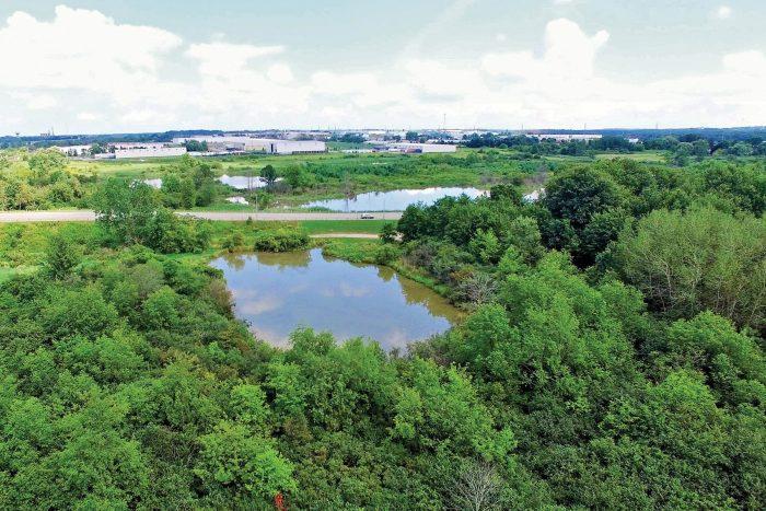 En 2018, le Conseil municipal de Woodstock s'est prononcé unanimement en faveur de la réfection de Brick Ponds. C'est ainsi que l'un des plus vastes milieux humides urbains au Canada, qui était auparavant une friche industrielle, est devenu un point de rassemblement.