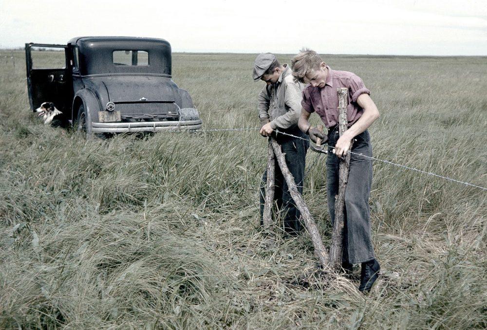 Des travailleurs installent une clôture, au début des années 1940, dans le marais Big Grass au Manitoba : il s'agissait du tout premier projet de conservation des milieux humides de CIC.