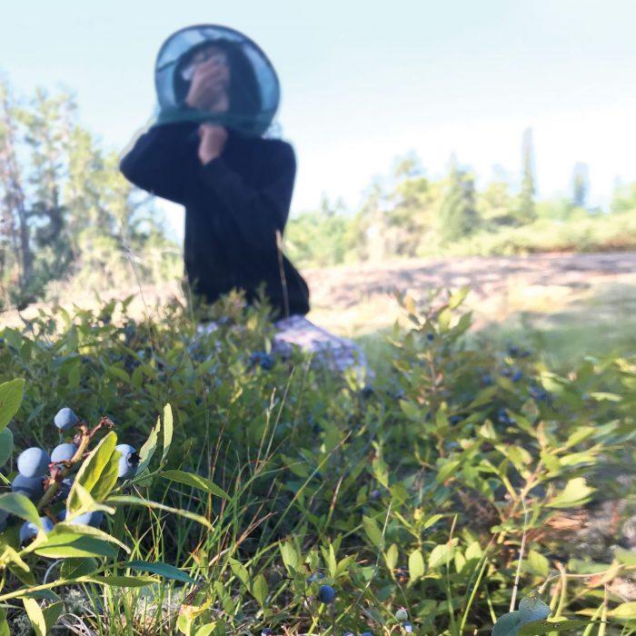 Le fils de Carolyn Kosheluk, Seth, mange une poignée de bleuets sous sa casquette à moustiquaire.