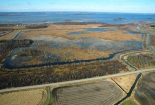 Le marais de la Digue-aux-Aigrettes fait peau neuve, fruit d'une collaboration étroite de Canards Illimités Canada et Environnement et Changement climatique Canada