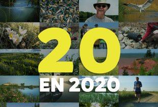 Le palmarès des 20meilleurs articles de CIC en 2020