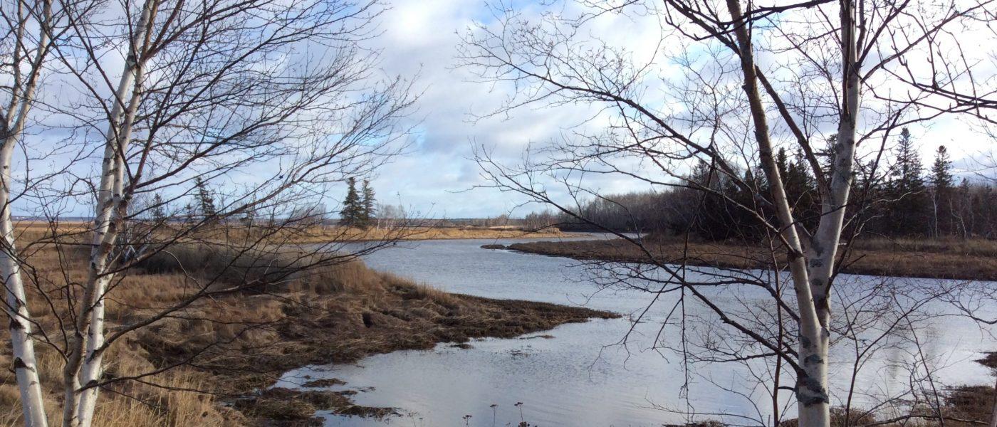 Le débit entrant d'eau salée sera rétabli avec l'affluent d'origine.