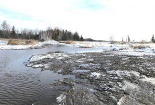 La refaunisation de la Rivière du Nord