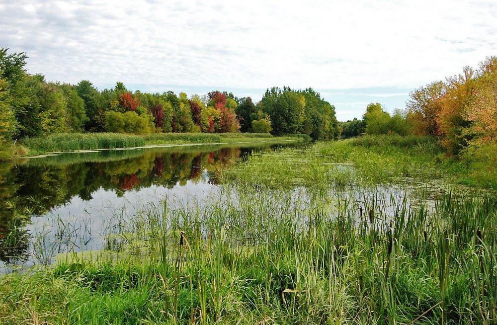 Rivière du Sud, au Quebec.
