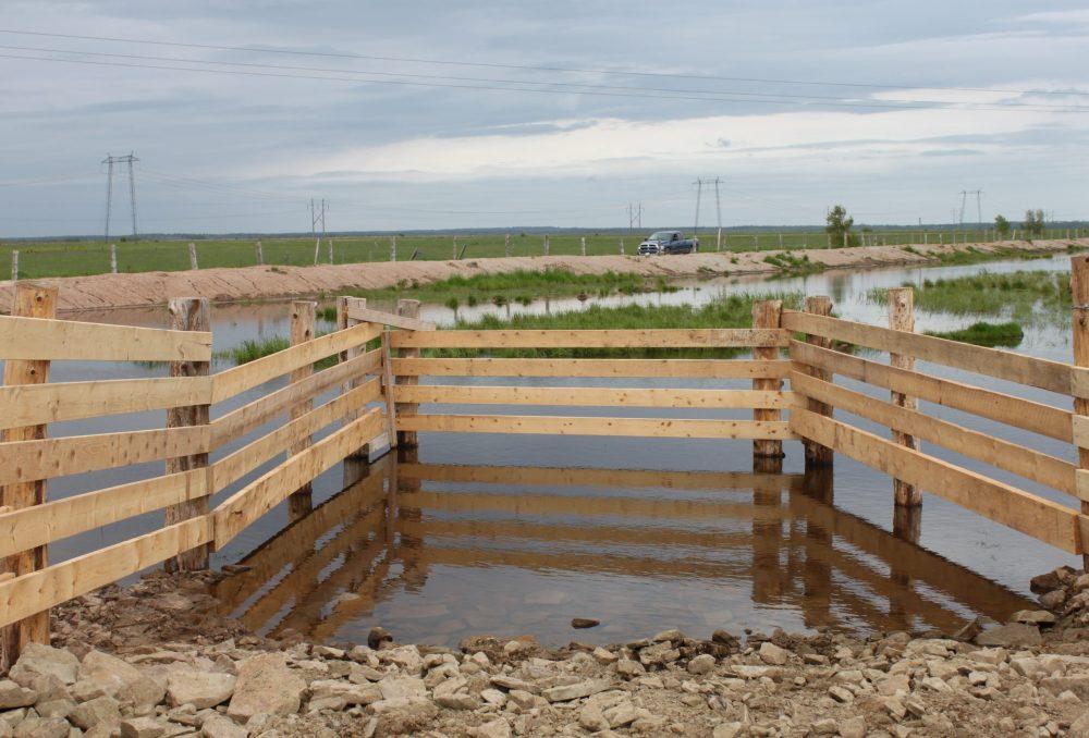 Grâce aux bassins d'irrigation qu'on vient d'aménager, la végétation naturelle peut filtrer et assainir l'eau, ce qui vient enrayer les sécheresses et permettre à la faune indigène de prospérer. On clôture les bassins et on aménage des cales durcies pour permettre au bétail de s'abreuver sans nuire aux milieux humides.