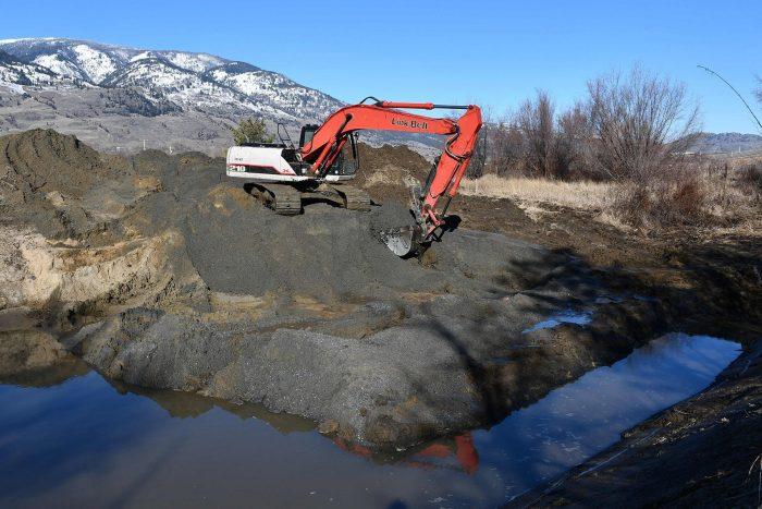 CIC a creusé neuf nouvelles petites zones humides afin de fournir un habitat principalement aux spadassins, mais aussi aux salamandres tigrées. Ces deux espèces sont des espèces en péril en Colombie-Britannique.