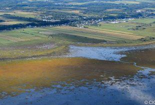 Coup d'envoi à la cartographie détaillée des milieux humides du Bas-Saint-Laurent