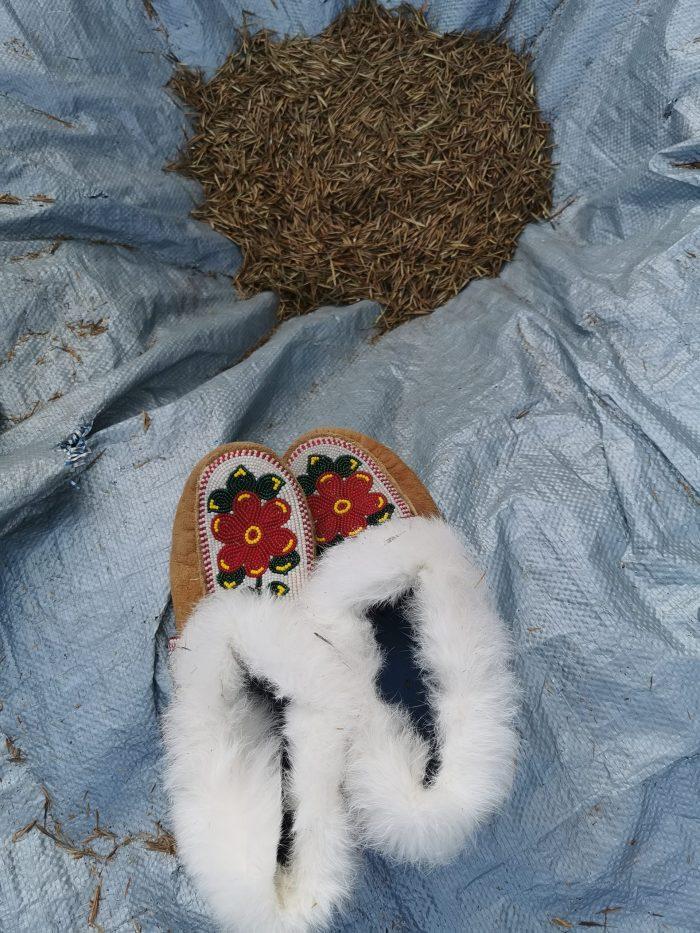 Les résultats de la fructueuse récolte du riz sauvage.